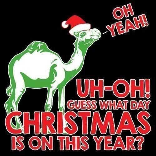 christmas is on hump day funny quotes funny quotes days of the week humor christmas hump day camel christmas day