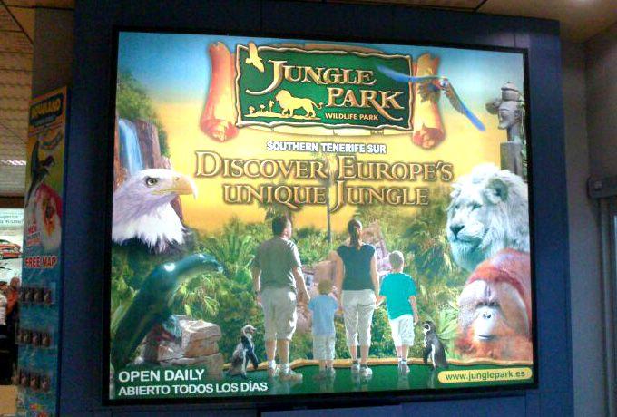 Jungle Park en la llegada del aeropuerto Tenerife Sur