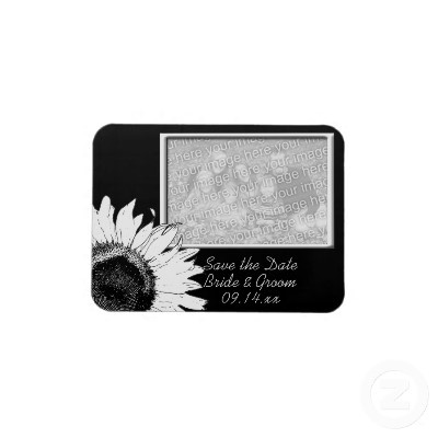Announce the date of your upcoming nuptials with the pretty Black and White #Sunflower #Wedding Save the Date Photo #Magnet . Customize it with the names of the bride and groom, specific marriage ceremony date and picture.This elegant custom floral wedding save the date photo magnet features black & white sunflower blossom adorning the corner with a black background. Perfect for your June, July or August summer; September, October or November Fall Sunflower wedding theme. #savethedate