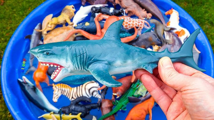Learn Colors With Wild Sea Animals Blue Water Shark Toys For Children