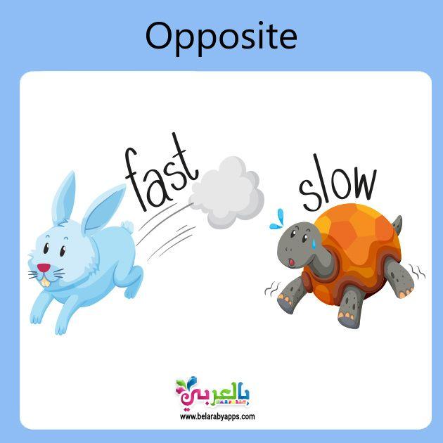 تعليم المتضادات للاطفال Pdf وسائل تعليمية حديثة بالصور بالعربي نتعلم Opposites Autism