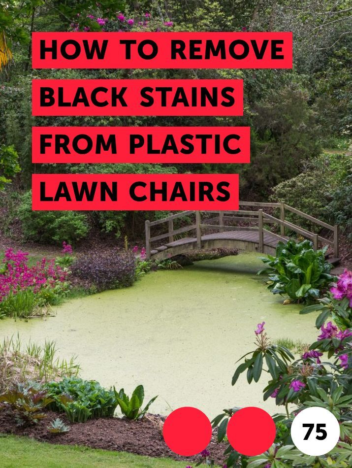 How To Remove Black Stains From Plastic Lawn Chairs Crepe Myrtle Trees Myrtle Tree Trees To Plant