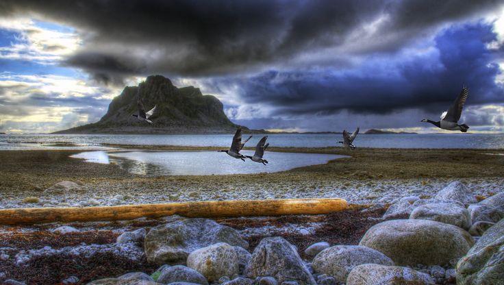 Shores of Vega by Torleif Bækken on 500px
