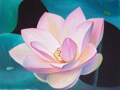 best lotus flower images on, Natural flower