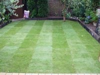 Greenfellas Turfing Services North London are a leading supply and installer turfing company that offers a complete new lawn or repair a existing one. We offer turfing installers North London and local areas.