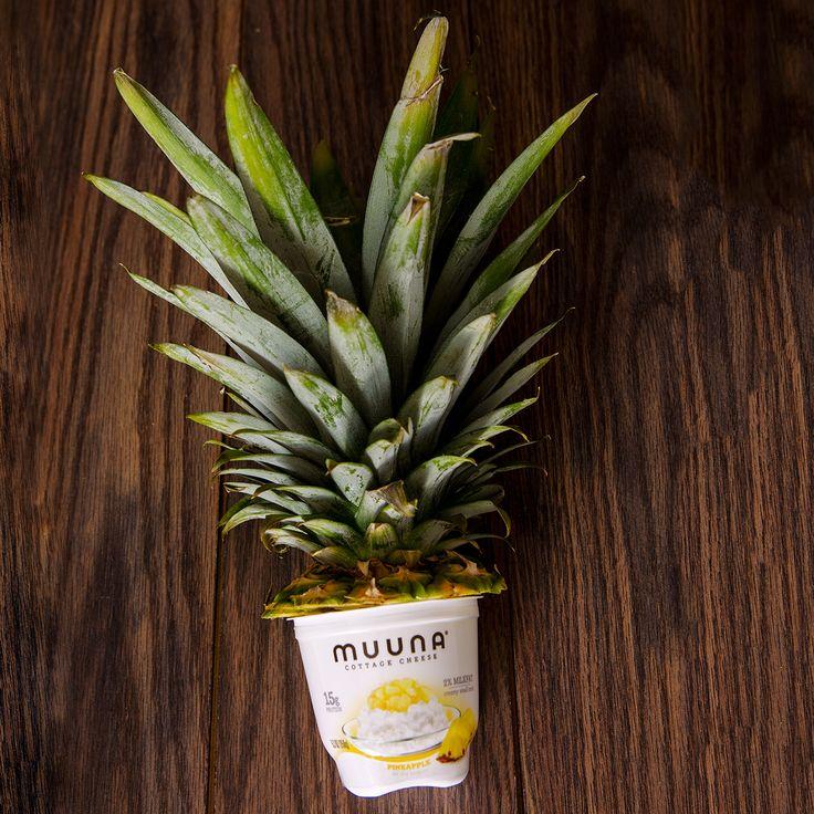 77 best Muuna ❤ images on Pinterest
