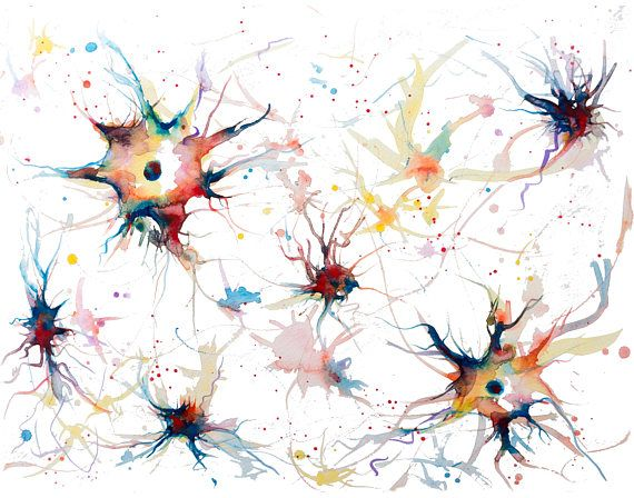 Neurons watercolor painting watercolor print neuron print