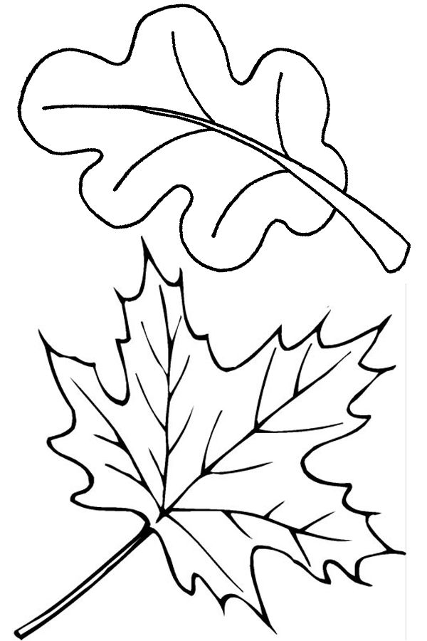 Two fall leaves coloring page - Free Printable Coloring Pages