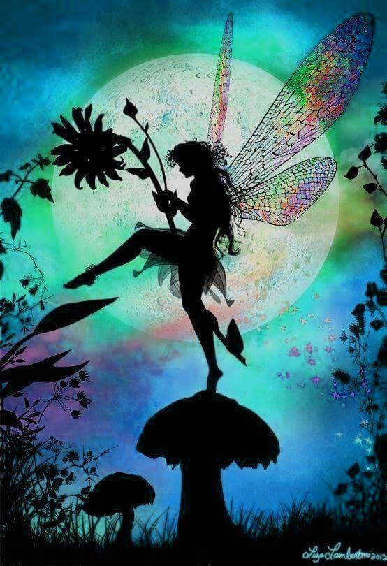 17 Best Images About Fairy Dust On Pinterest