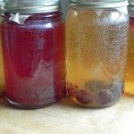 Flavored Kombucha: How to Make Your Favorites at Home