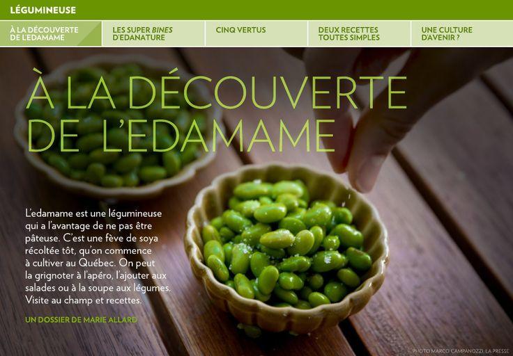 À la découverte de l'edamame - La Presse+