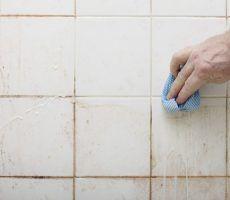 Niemand freut sich darauf, das Badezimmer sauber machen zu müssen. Das kann manchmal sogar ein echter Alptraum werden. Die meisten wirksamen Mittel sind leider auch voller Chemikalien und darum ziemlich giftig. Wenn du damit sauber machst, möchte man am liebsten eine Gasmaske tragen gegen all die aufsteigenden Dämpfe. Wusstest du jedoch, dass es hierfür eine …