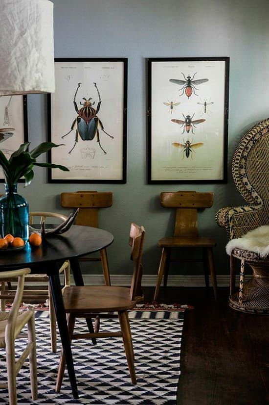Looking for beautiful but affordable art at home? I've found you a textbook solution–quite literally–to your bare wall problem: Vintage science illustrations. These drawings of flora and fauna look great nearly anywhere in your home, and they come at the low, low cost of... nothing.