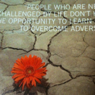 Tips for Overcoming Adversity