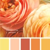 Design Seeds...a beautiful blog with tons of palette designs...great for inspiration boards.