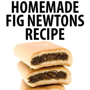 The Chew: Michael Symon Fig Chewtons Recipe & Fake Fig Newtons Recipe