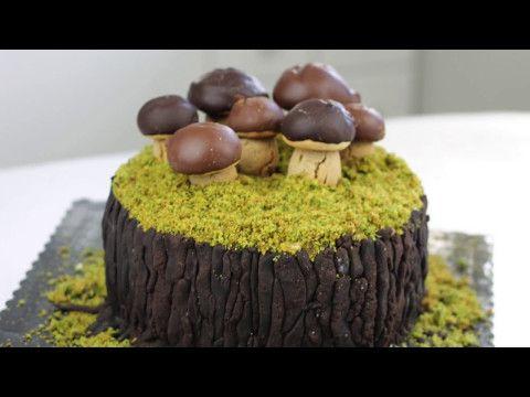 Prawdziwe borowiki na wiosnę?...czyli tort dla prawdziwego mężczyzny    - YouTube