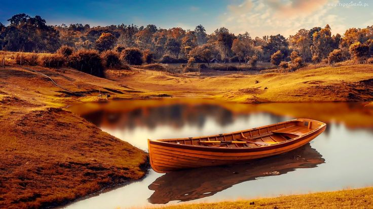 Łódka, Staw, Drzewa, Las, Jesień