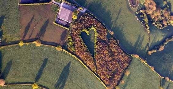 Agricoltore britannico pianta un bosco a forma di cuore per omaggiare la moglie scomparsa