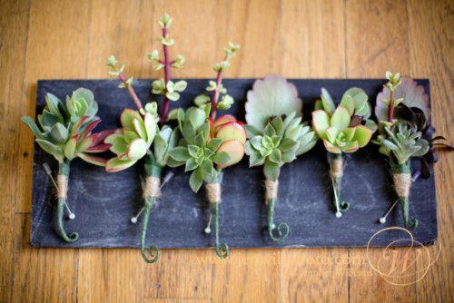 Statement Succulents: Wedding Bouquets, Wedding Day, Succulent Boutonniere, Wedding Flowers, Succulents Wedding, Wedding Details, Succulent Bouquets, Big Day, Succulent Boutonnieres