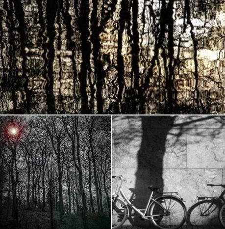 Stemnings fuldt foto-kunst i Gittes kreative hjørne Gittes kreative hjørne/Træer i søen http://www.amioamio.com/da/produkt/143669/ Gittes kreative hjørne/Mørket http://www.amioamio.com/da/produkt/143657/ Gittes kreative hjørne/Cykler og træ http://www.amioamio.com/da/produkt/143663/     LEV AF DIN KUNST - få en gratis smagsprøve på hvordan du selv kan tænke nye muligheder i din kunst kombineret med de sociale medier  Log ind her GRATIS   https://dorthewalbum.simplero.com/purchase/37251-Klu