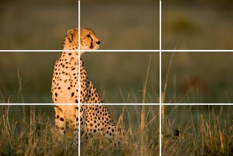 "The rule of thirds - simplified    ""If an image is divided into nine equal parts, the compositional elements that run along the lines or at the intersections are more pleasing..."