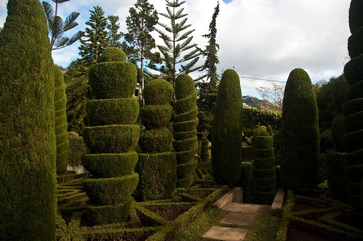 Madeira, January 2015