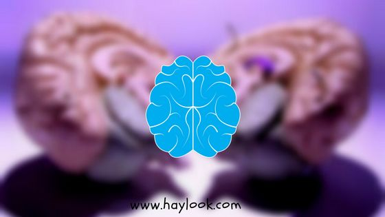 Do Consciousness Works Even after Death, Research Found!