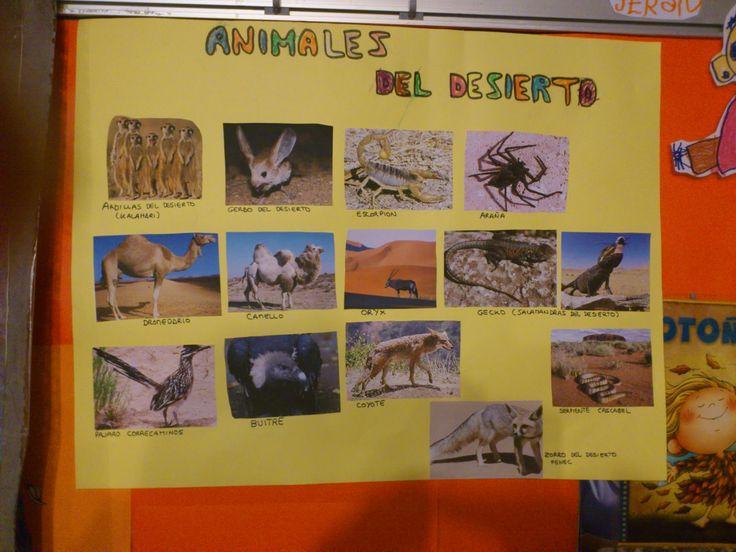 proyecto infantil el desierto - Buscar con Google