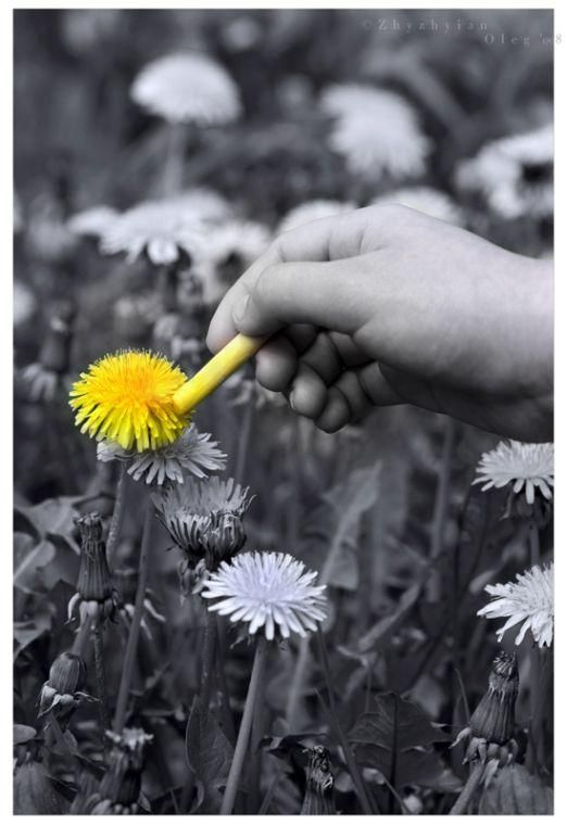 """""""I came along I wrote a song for you And all the things you do And it was called 'Yellow' """"  Coldplay"""