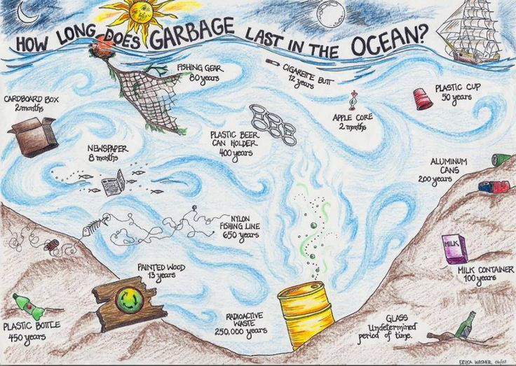 How Long does Garbage last in the Ocean?  Mahalo   www.oceandefenderhawaii.com  Art by Erica Wasner