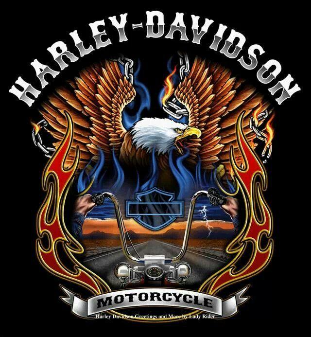 Harley Davidson Motorcycles  Dreaming
