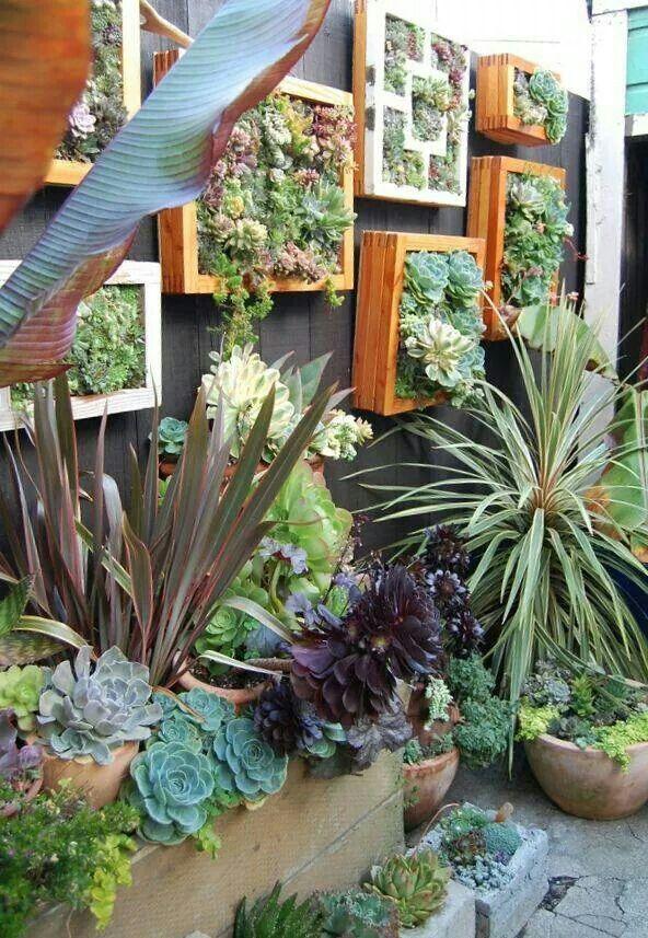 Jardim de inverno pequeno com plantas suspensas na parede. Fotografia: http://www.decorfacil.com