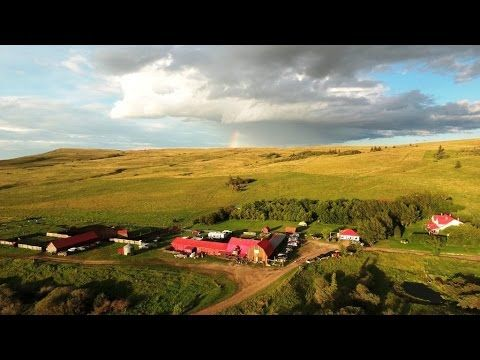 Levasseur Family Reunion at the Historic Reesor Ranch 2016