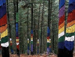 Bosque pintado de Oma, Vizcaya, España.