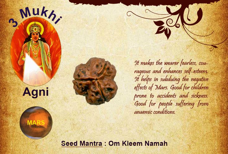 Benefits of three Mukhi Rudraksha: Seed Mantra: Om Kleem Namah It makes the wearer fearless, courageous and enhances self-esteem. It helps in subduing the negative effects of Mars. Good for children prone to accidents and sickness. Good for people suffering from anemic conditions. http://www.rudralife.com/Rudraksha/details.php?id=10