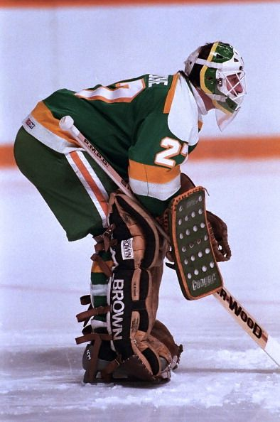 giles-meloche-of-the-minnesota-north-stars-prepares-for-a-shot-the-picture-id467472157 (394×594)