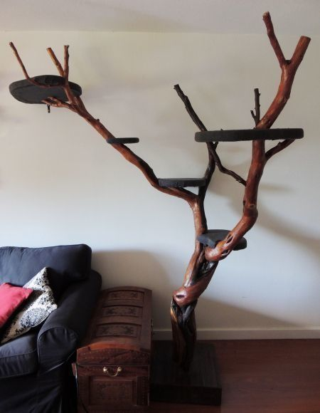 A cat tree.  Using shellacked branches and platforms, you can create an awesome resting place for you cat that won't look so bad in your living room, either.