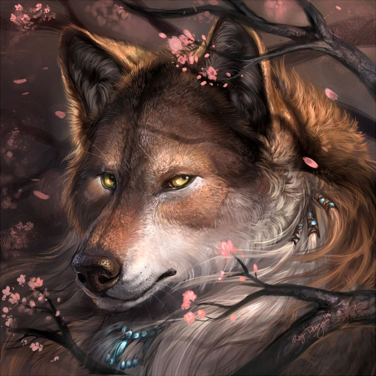 908 Wolf HD Wallpapers   Backgrounds - Wallpaper Abyss