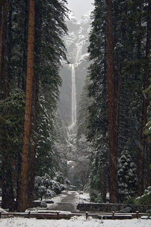 Yosemite National Park - Lower falls