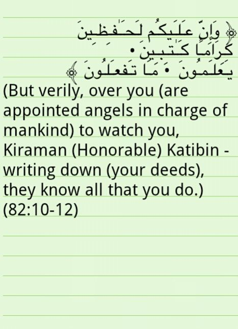 516 best images about qur 39 an quotes on pinterest