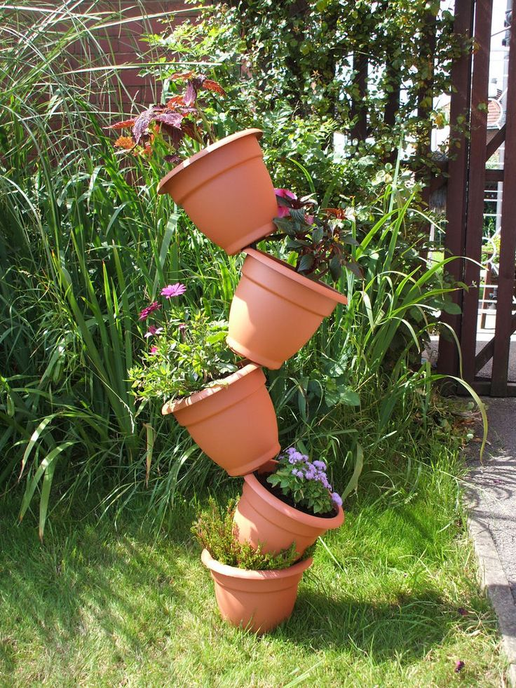 Picture of use plant pot.JPG
