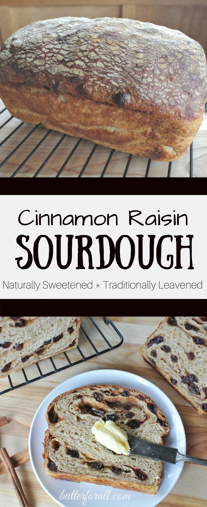 A traditional sourdough bread studded and swirled with plump raisins, lots of cinnamon and sticky sweet maple syrup. Click to visit the ButterForAll blog and get the recipe!