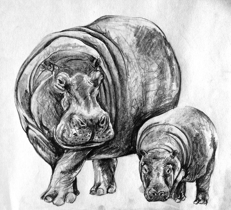 большие животные картинки рисунки все время много