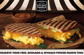 Corner Bakery Cafe: Free Power Panini Thin - http://www.livingrichwithcoupons.com/2013/01/corner-bakery-cafe-free-power-panini-thin-done.html