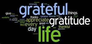 Image Search Results for the energy of gratitude