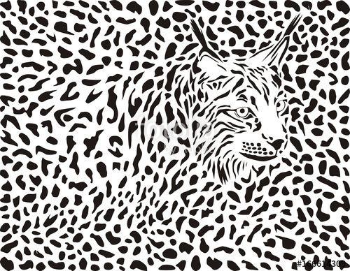 Vector: Lynx background