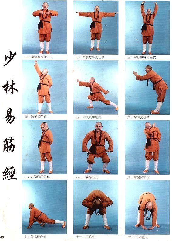 yi jin jing tai chi exercise qigong kung fu martial arts