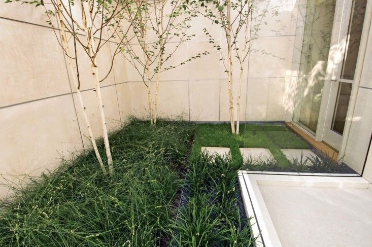 Andrea Cochran Landscape Architecture designed several interior courtyards in an austerely modern Marin house.