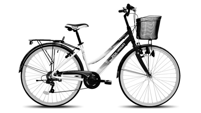 It's local, it's a city bike, it's very cheap, it's high quality built. what else could you ask for?
